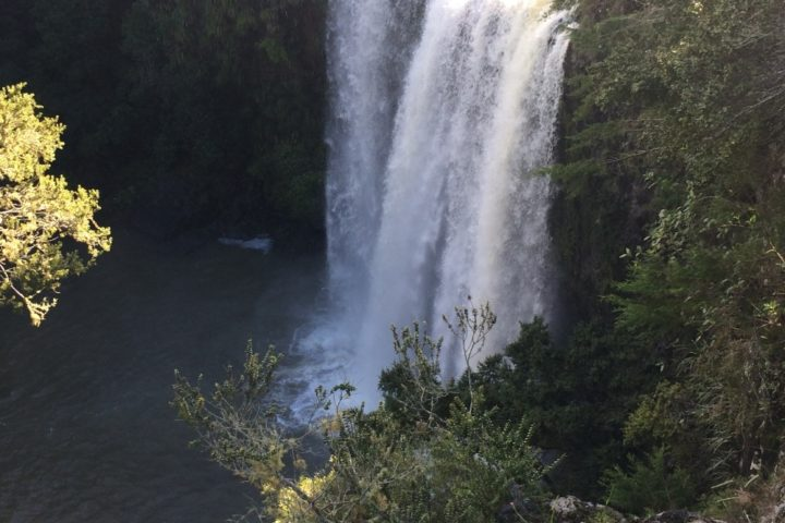 Waterfalls in Whangarei
