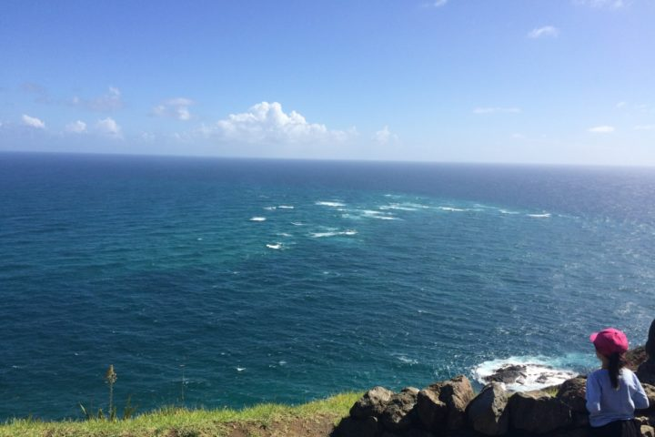 Left: Tasman Sea, Right: Pacific Ocean
