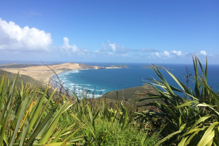 Sand dune at Cape Reinga