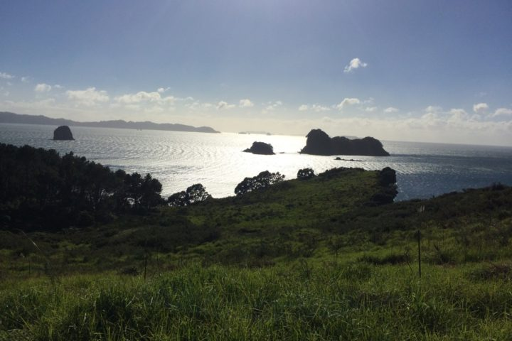 Way to Cathedral Cove