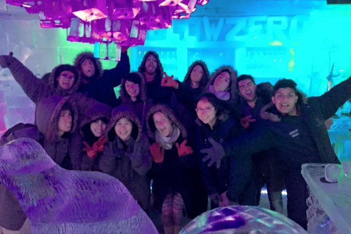 Ice Bar Queentown